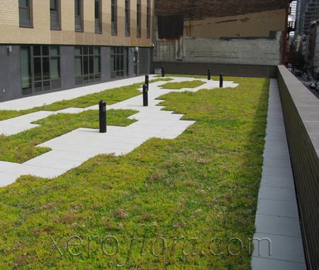 school for visual arts dormitory - New York // NY