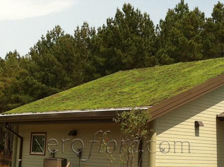 hays nature centre - Huntsville // AL