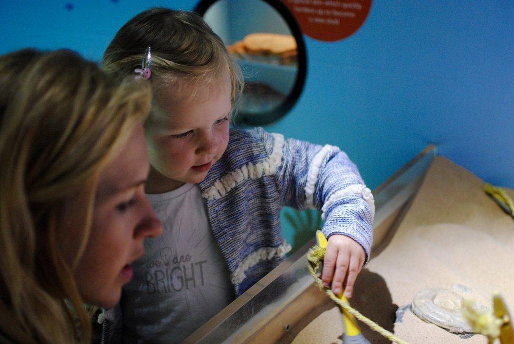 Sienna a adoré brosser la sable avec son pinceau pour découvrir les fossiles.