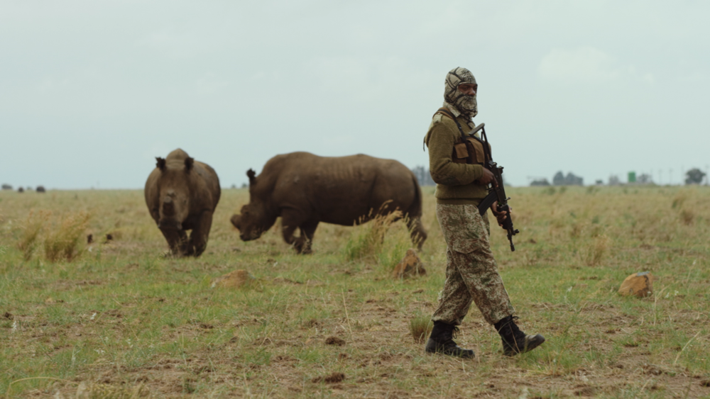 Armed and dangerous and with a pure mission - part of a small but extremely effective fighting force exclusively for the protection of rhinos! I got to know some of these guys and no doubt they are HARD CORE!
