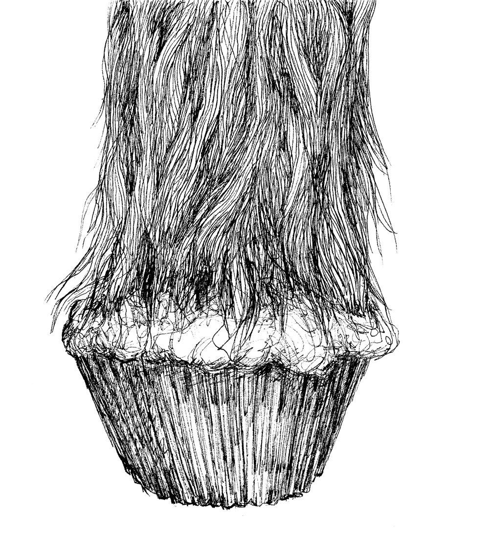 Smereka - muffin