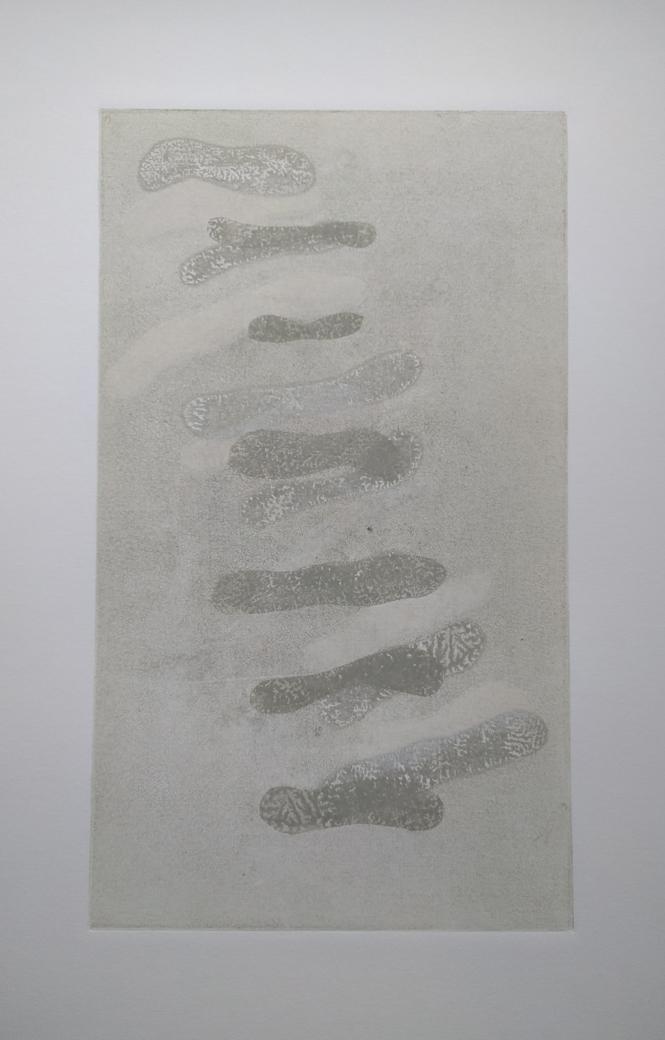 """smereka-22 x 15"""" - lichen sticks"""