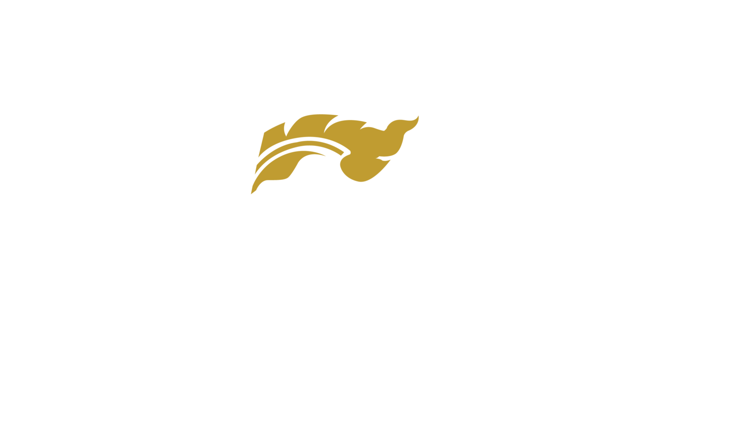 Masaru Sushi & Thai — Miami Beach