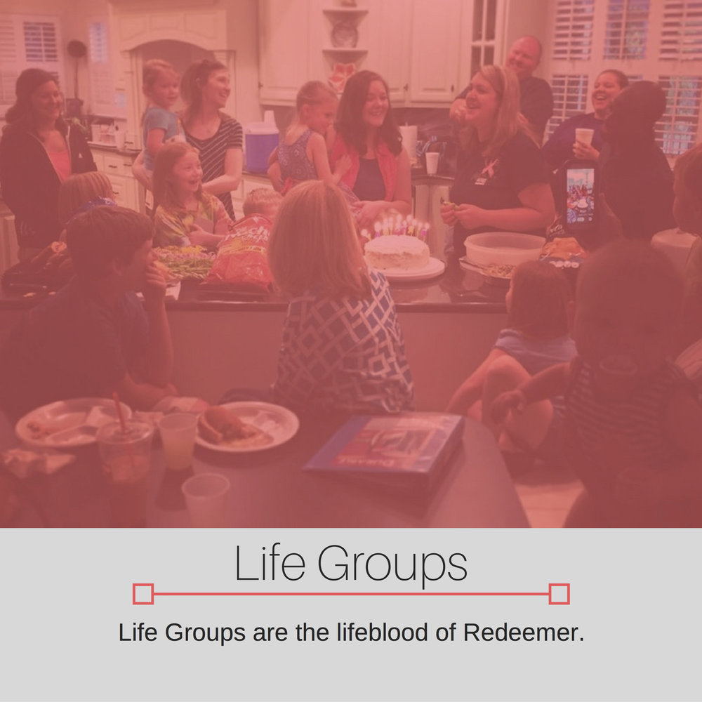 Next Step - Life Groups.png