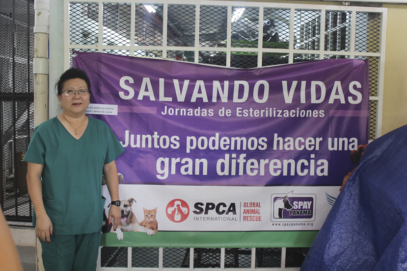 Pat Chan, Spay Panama's founder standing in front of a sterilization days sign.