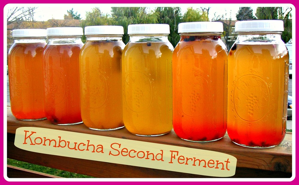Kombucha-second-ferment.jpg