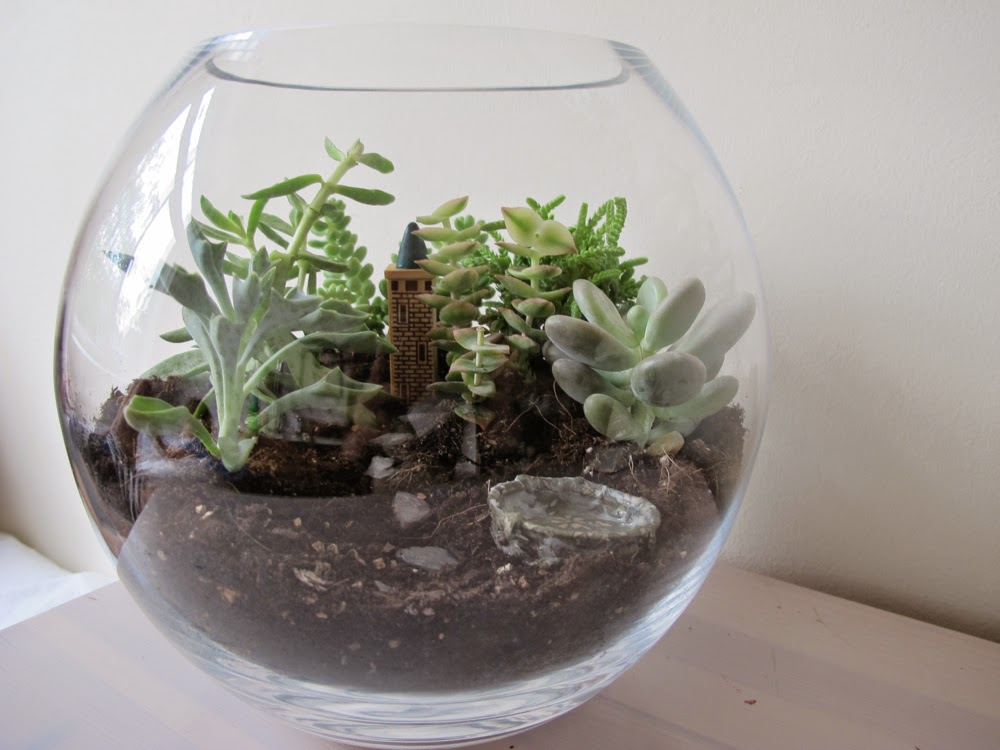 terrarium with tower.jpg