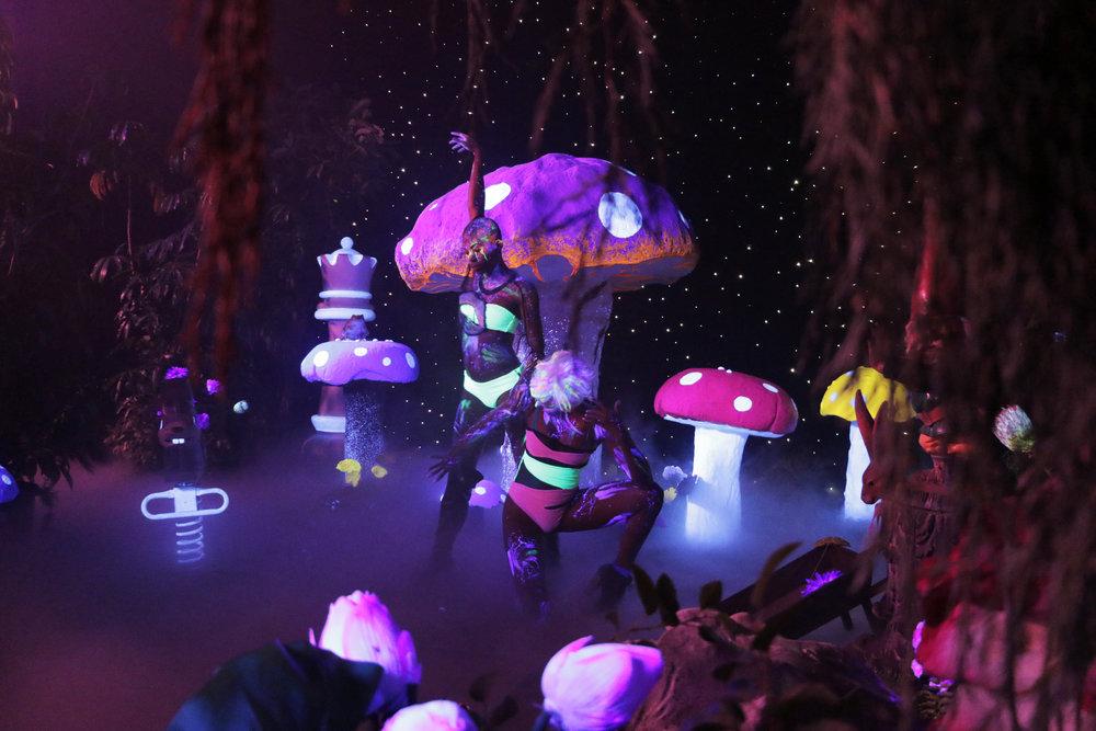 Kid Cudi Mushroom Set 2 w dancers.jpg