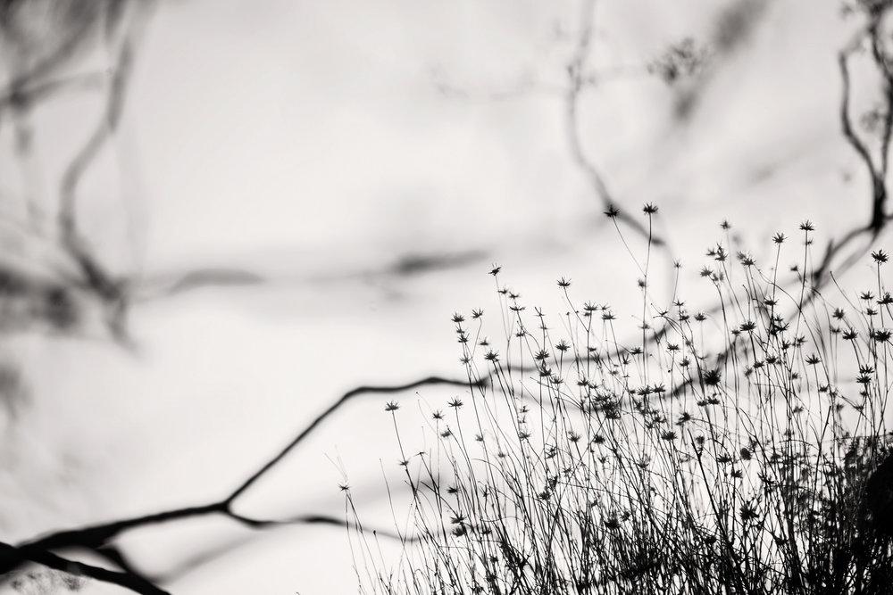 Britt_Nemeth_Studios_PhotographyNature_Spaces_Places_Vaction_Travel006.jpg