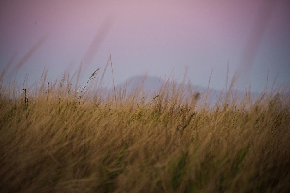 Britt_Nemeth_Studios_PhotographyNature_Spaces_Places_Vaction_Travel011.jpg
