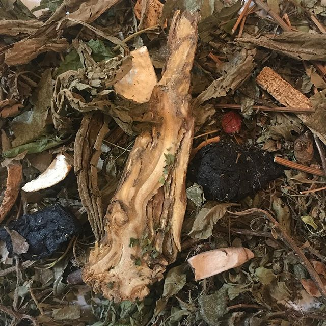 Some leaves are for bundling others are for sipping on #makingtea #naturesmagic #bundledye #perfectdayfortea #lifeisgood