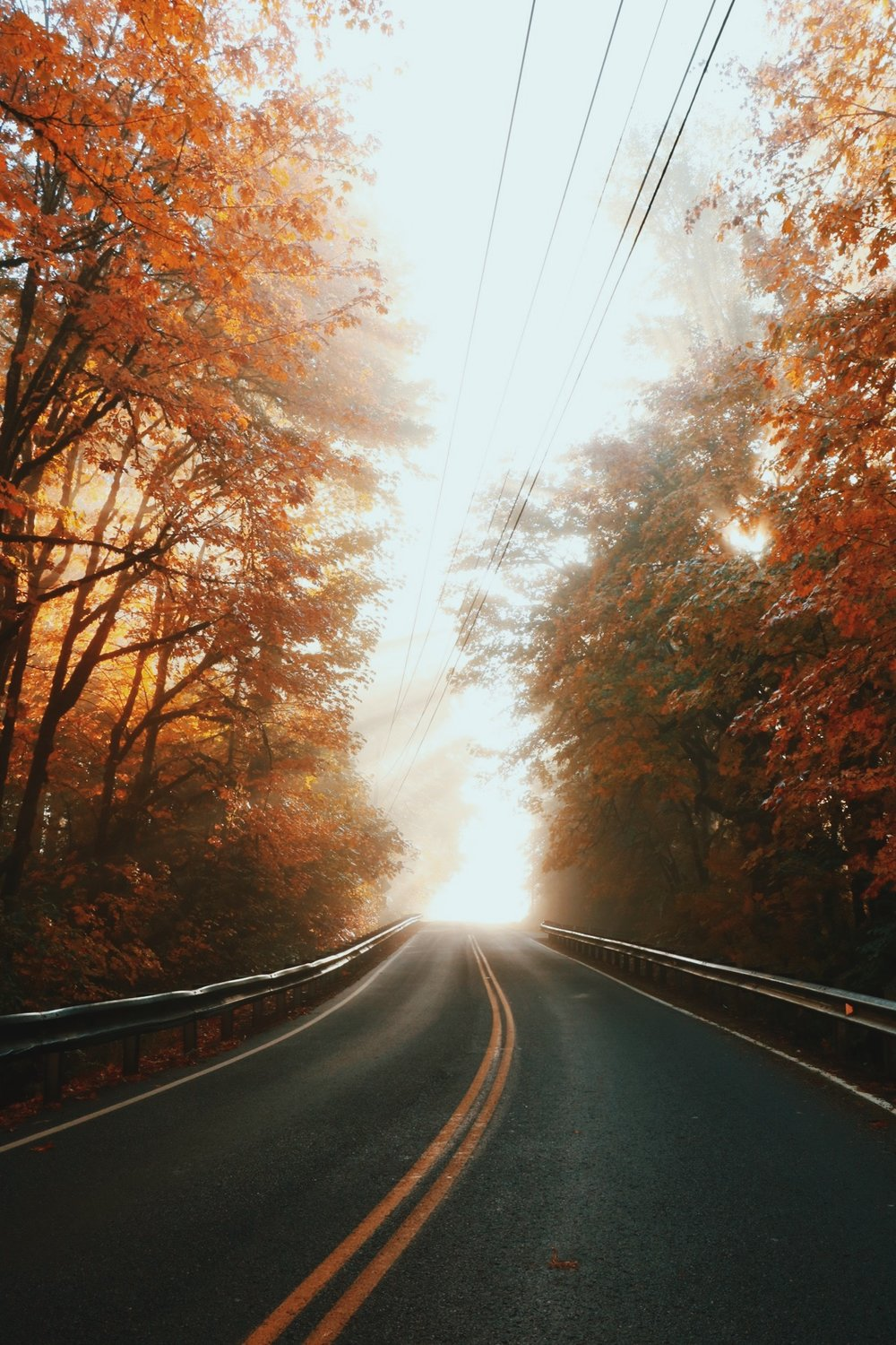 Best autumn drives in the PNW -