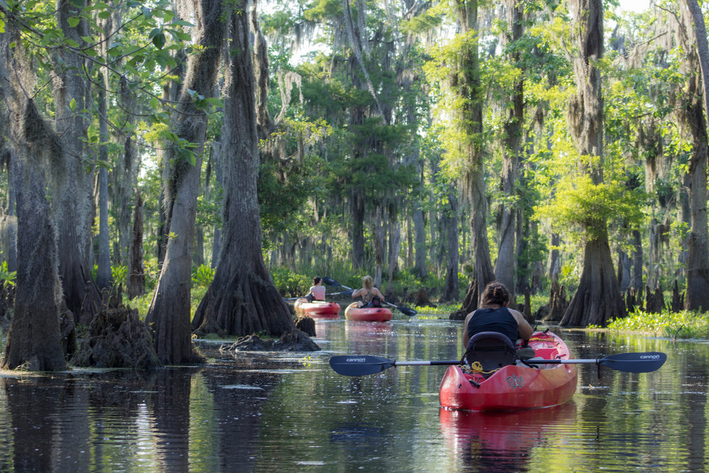 Kids-in-Swamp-Camp.jpg