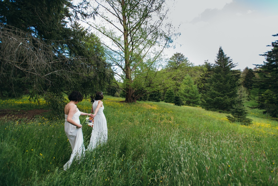 elopement-arnold-arboretum-boston0028.jpg
