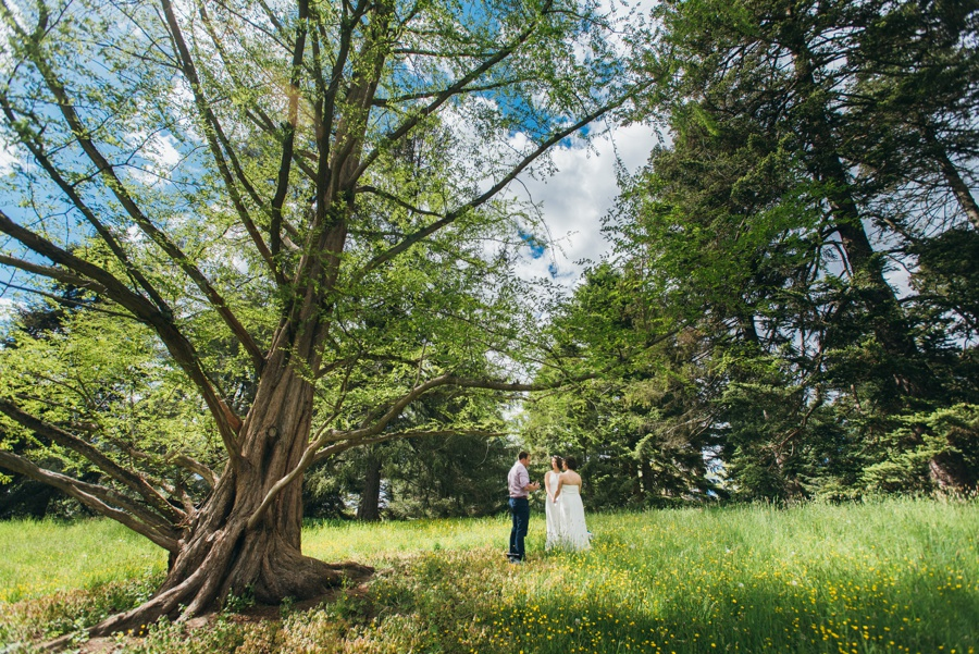 elopement-arnold-arboretum-boston0030.jpg