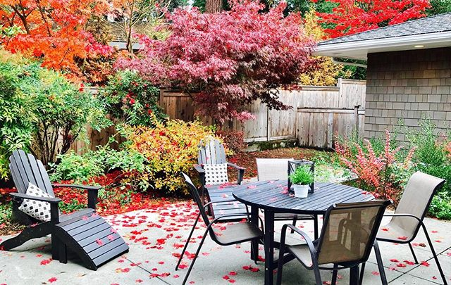 I bet this patio saw a lot of action this summer. Inevitably, fall has taken over but its still beautiful.