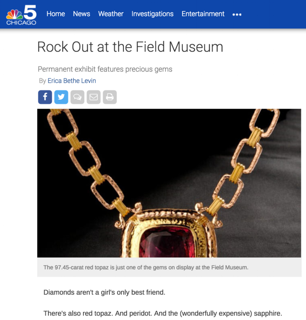 Erica Bethe NBC Chicago Field Museum
