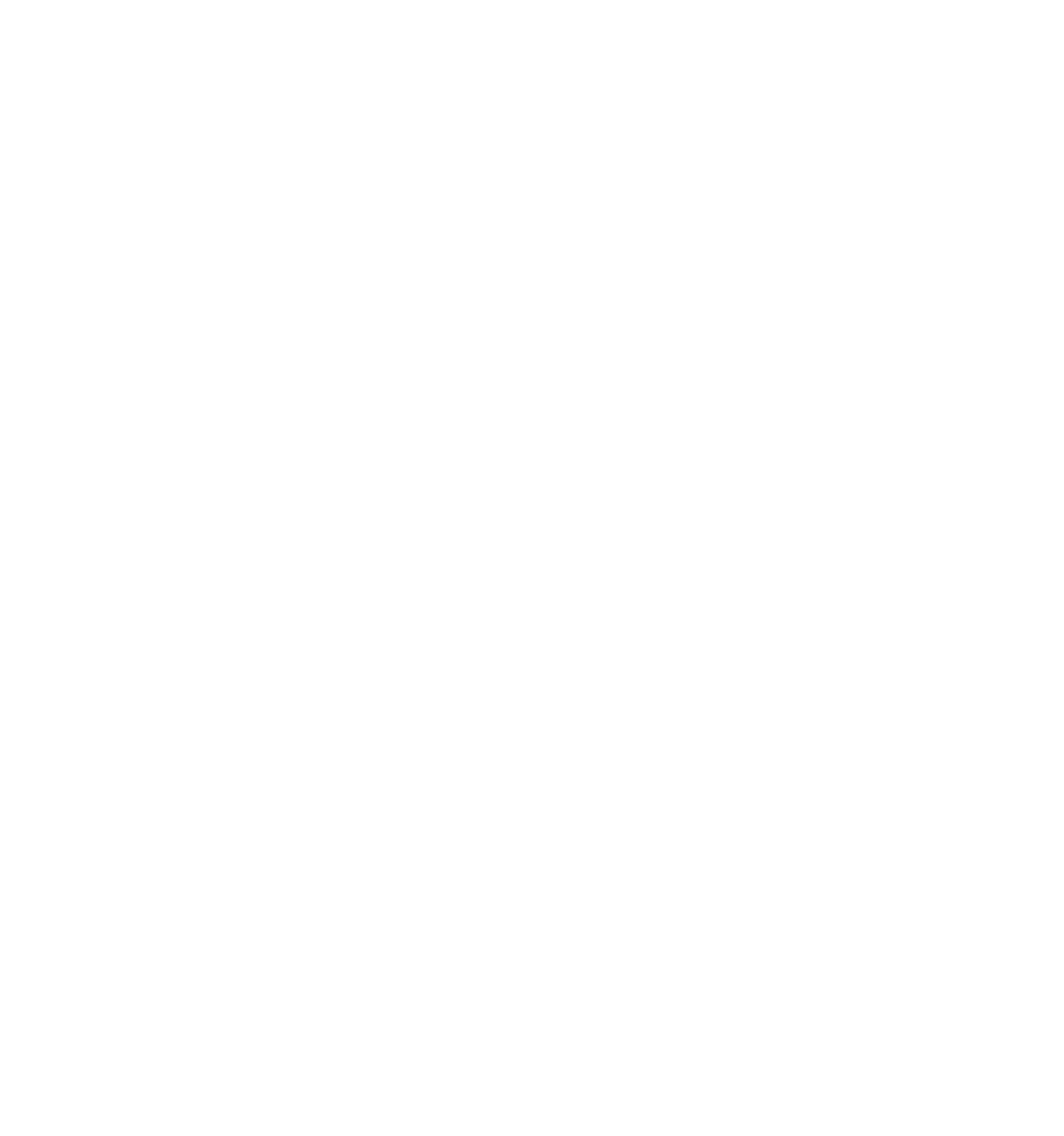 VIRGIN BEAUTY BITCH