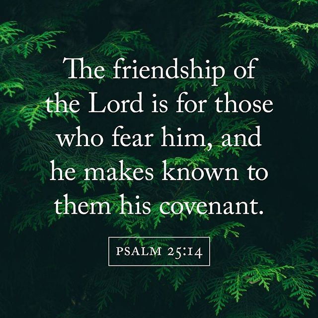 Isn't it crazy and beautiful that Jesus calls us his friends? He wants us in on what he's doing. There is no one like him. Praise!⠀ .⠀ .⠀ #truegoldmag #verseoftheday #friendship #jesusismyfriend #thankyoulord #praisethelord #god #christian #jesus #holyspirit #bible #verse #bibleverse #psalm #godisgood #ptl #covenant #friends #friend #bff #lord #known #blessed #christianwomen