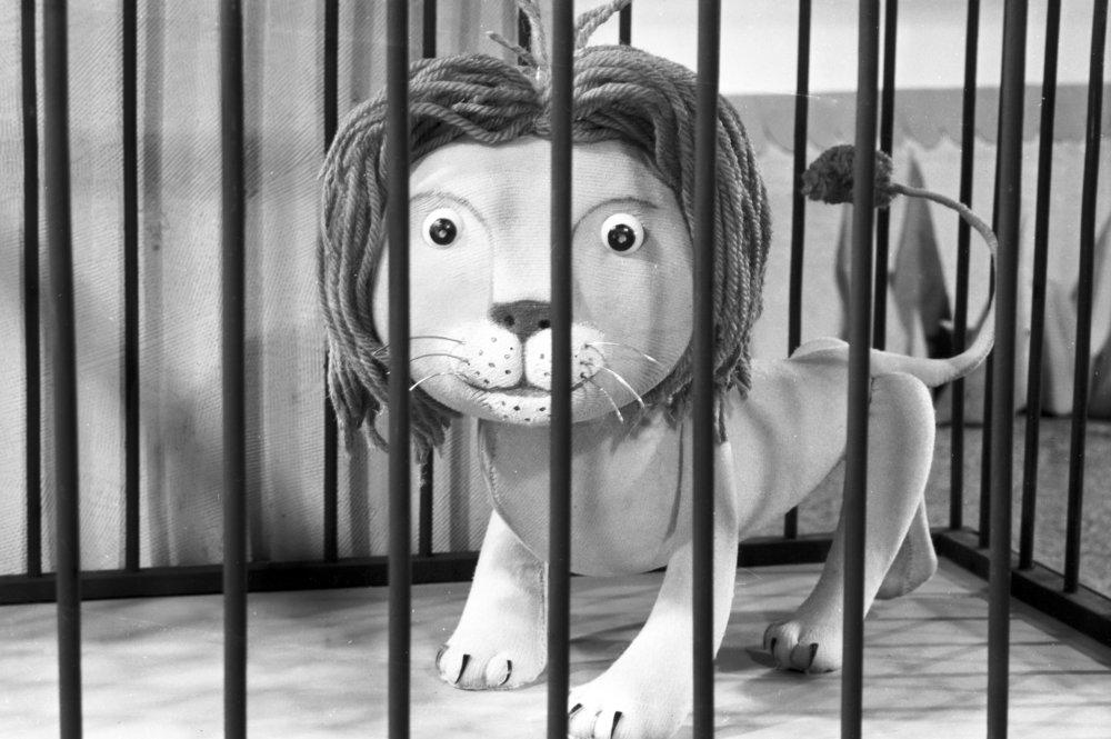 05 never tease a lion.jpg