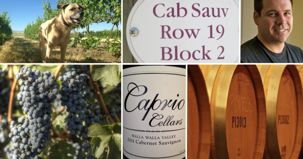 caprio cellars photo montage.png