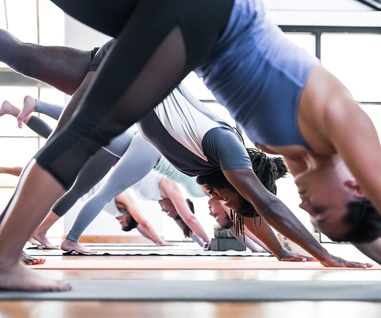 Photo via Yoga Tree