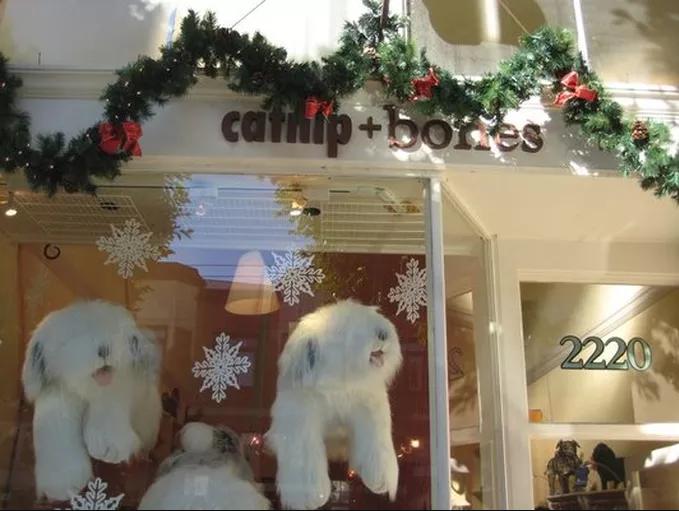 <h2>Catnip+Bones</h2>