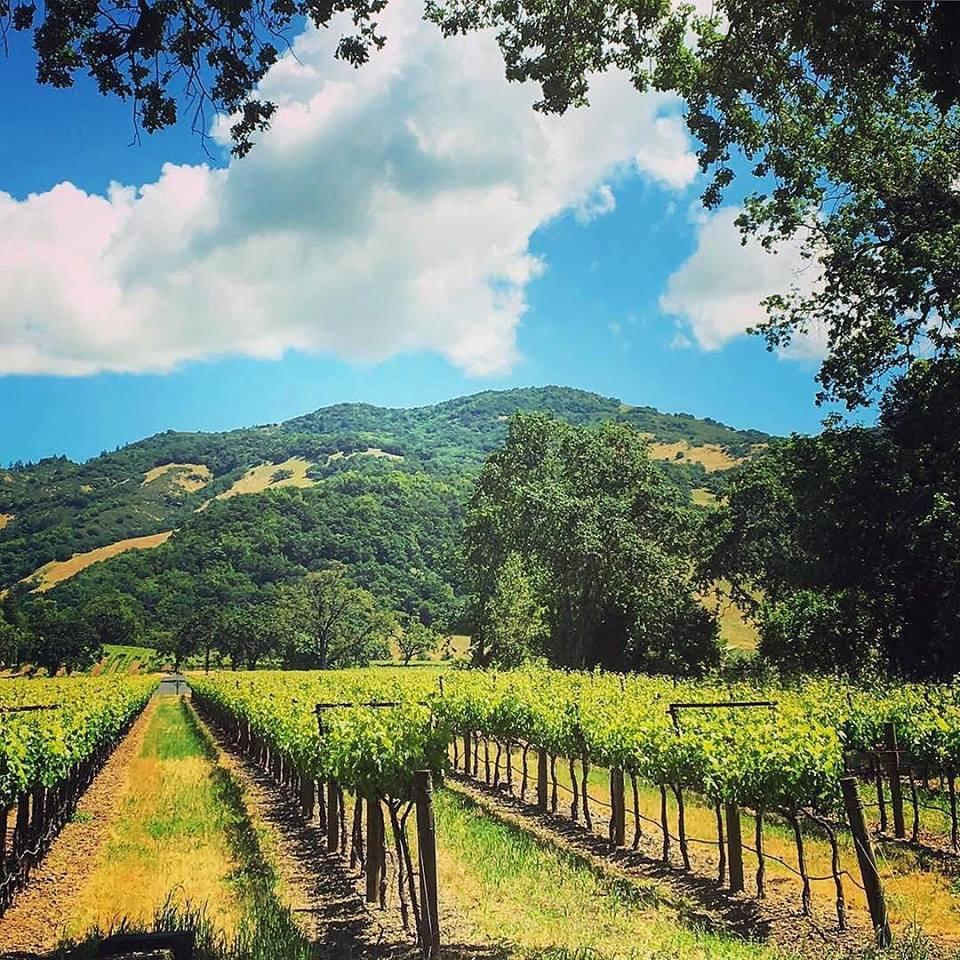 Photo: Pombo Pix via Sonoma County Visitors Bureau