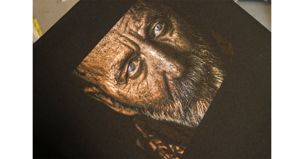 Elder Man design printed with premium screen printing ink.