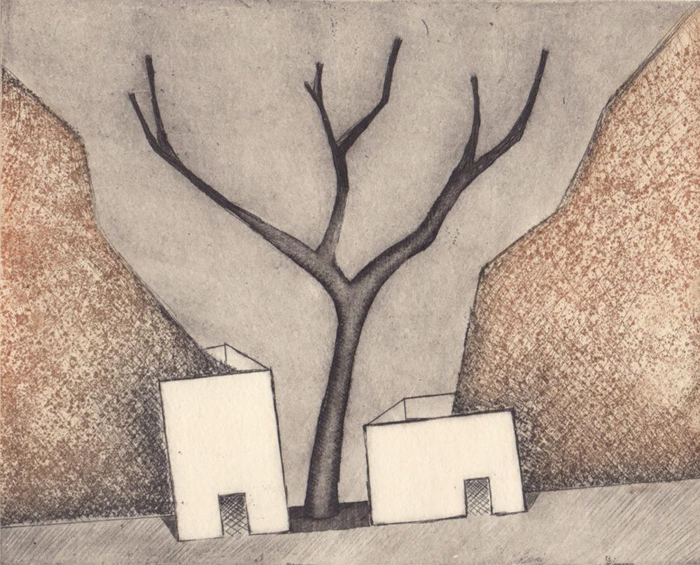 Casas con árbol_María Alvarez_40x50_Fotopolímero_242.jpg