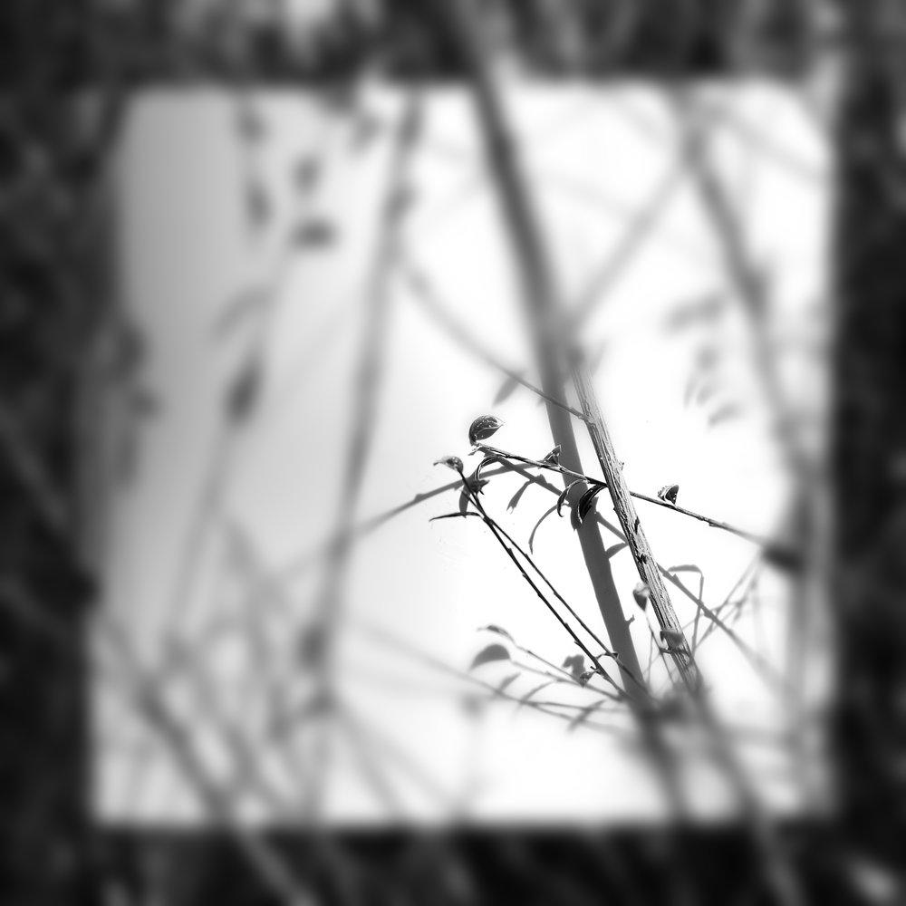 experimentacion 3.jpg