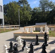 Schachbrett vor dem Interim