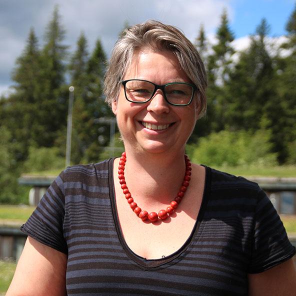Vibeke Solbue   Førsteamanuensis, lærerutdanningen ved Høgskolen i Bergen.