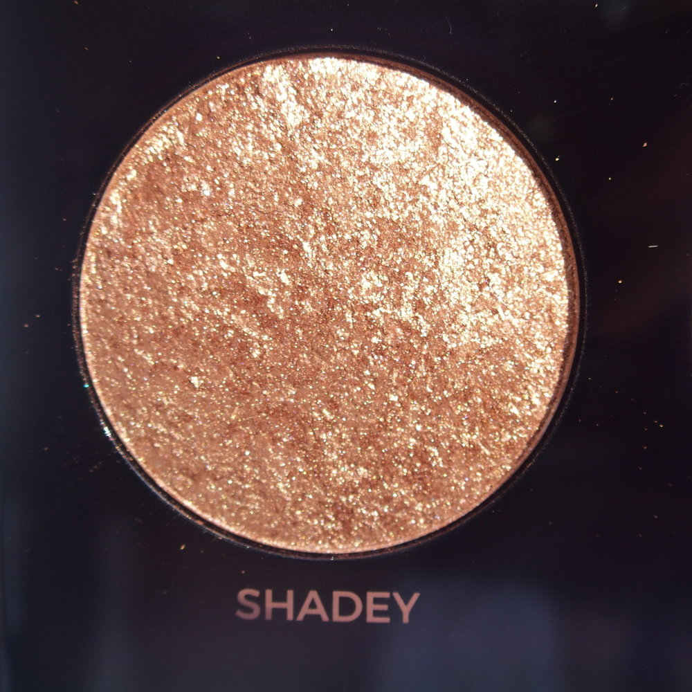 Makeup Revolution Pro HD Amplified Get Baked Palette swatches - Shadey