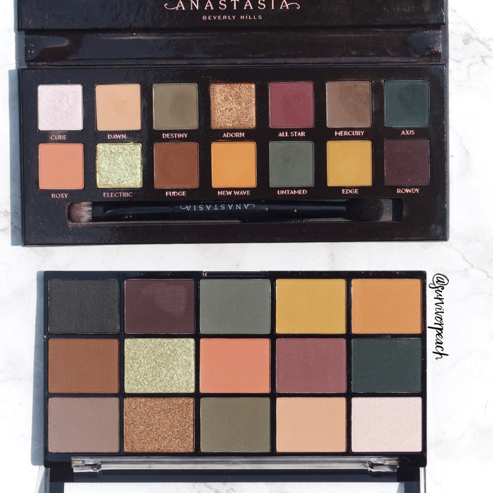 Revolution Re-loaded palette Iconic Division (bottom) & Anastasia Subculture palette (top)