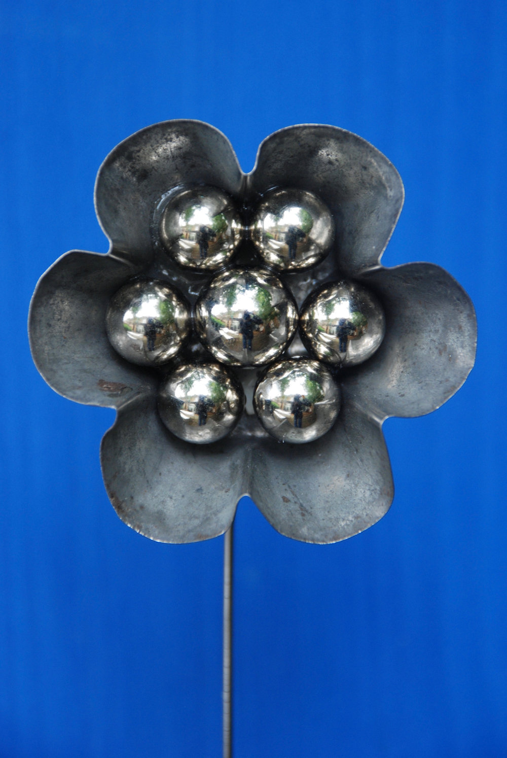 Steel on Blue Flower
