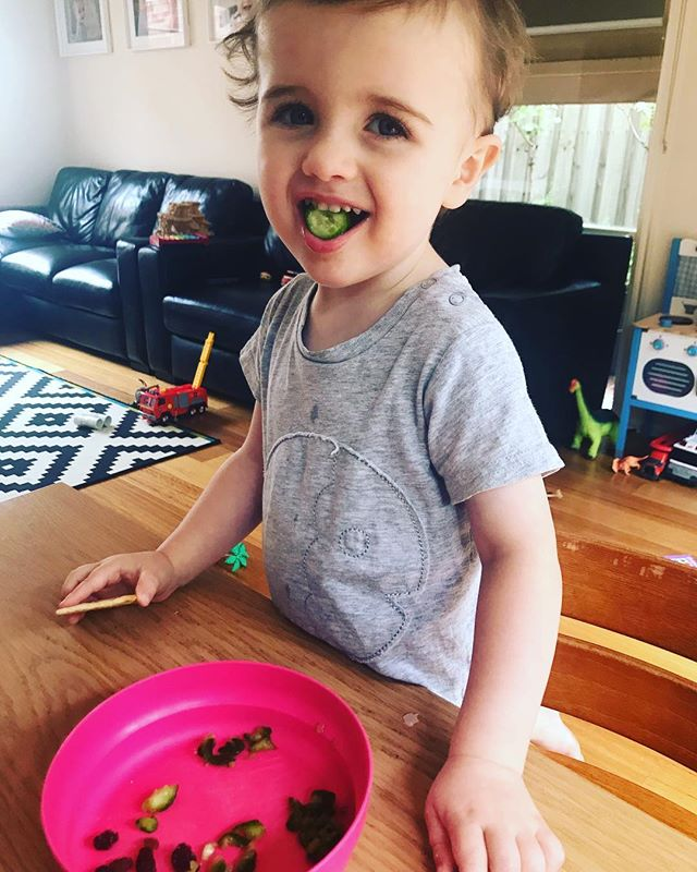 Do you let your child spit out their food?  Sometimes it can feel like good parenting to make your child swallow food that they put in their mouth. In this picture, you can see Hamish (2 years old) has taken many bites of the mini cucumber he tried for the first time, then spat them out into his bowl.  Whilst it isn't the most pleasant thing to watch, Hamish knows that he can take a bite or even have a go at chewing a new food he isn't sure about without pressure that he has to swallow it or finish it.  This means he is more likely to give it a go in the first place!  When I talk to families about their child trying new foods I encourage them to measure success by small steps – a child serving a new food onto their plate and not eating it is a big step. Then it may be serving on their plate and licking the food as another step. Taking a little bite and spitting out the food is a huge next step, working up though taking a bite, chewing and spitting out and eventually taking a bite, chewing and swallowing the food.  Remember your job as a parent it to decide the what, when and where of feeding – let your child do their job of deciding what food they will eat from what is offered and how much they will eat.