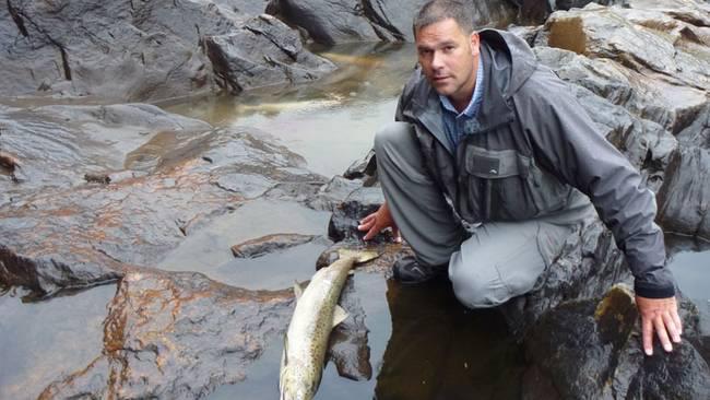 Effektkjøring gir brå endringer i vannstand. Laks vandrer opp ved høy vannstand og strander og dør når vannet forsvinner.  Foto: Save the Baltic salmon