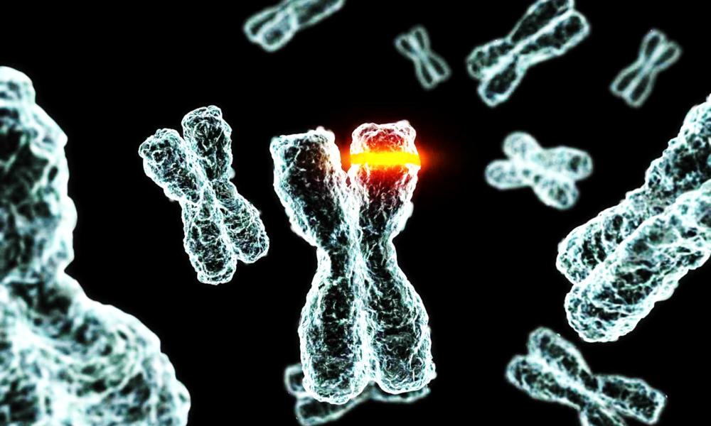 En el ADN de un buen emprendedor hay algunos trucos efectivos a tener en cuenta