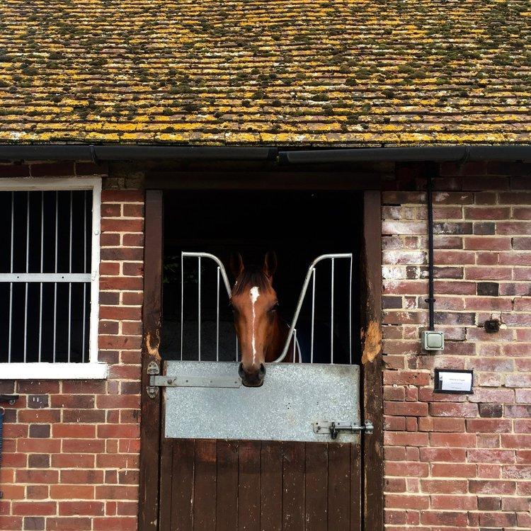 Lambourn UK1.jpg