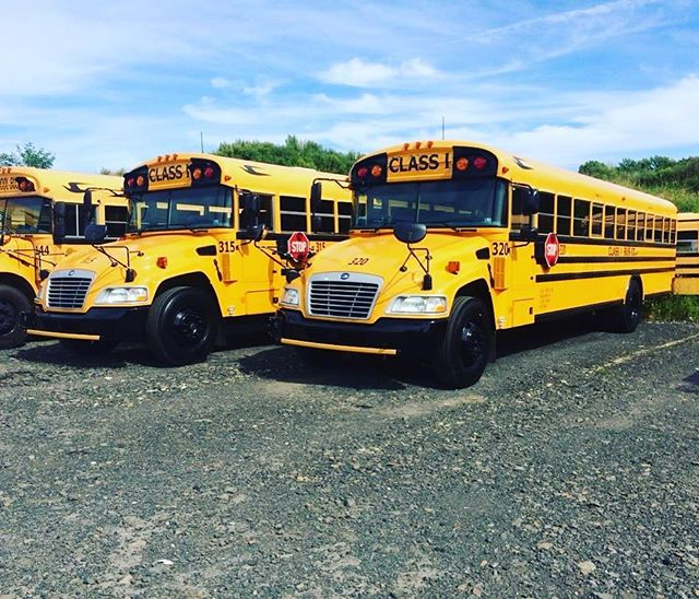 Two of our newest School Buses, ready for the 2016 school year!