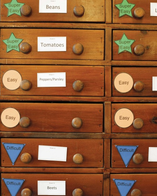 Seeds_Drawers
