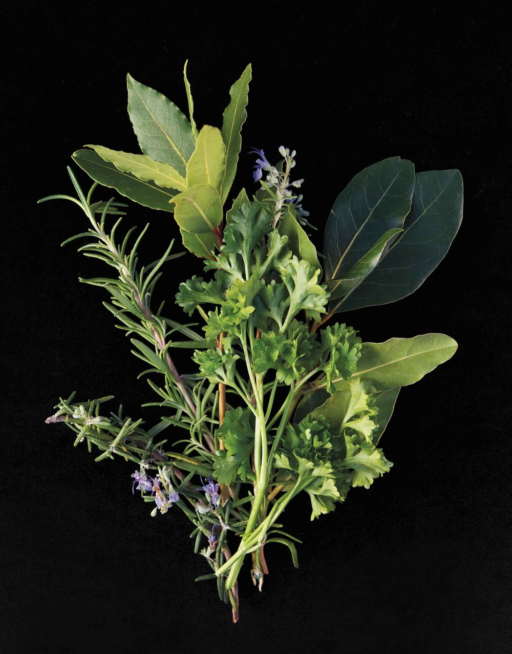 Herb2
