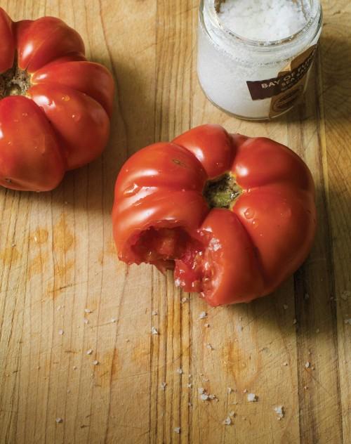 TomatoBite