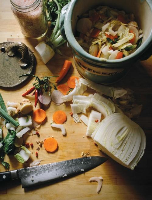 Fermentation-500x655.jpg