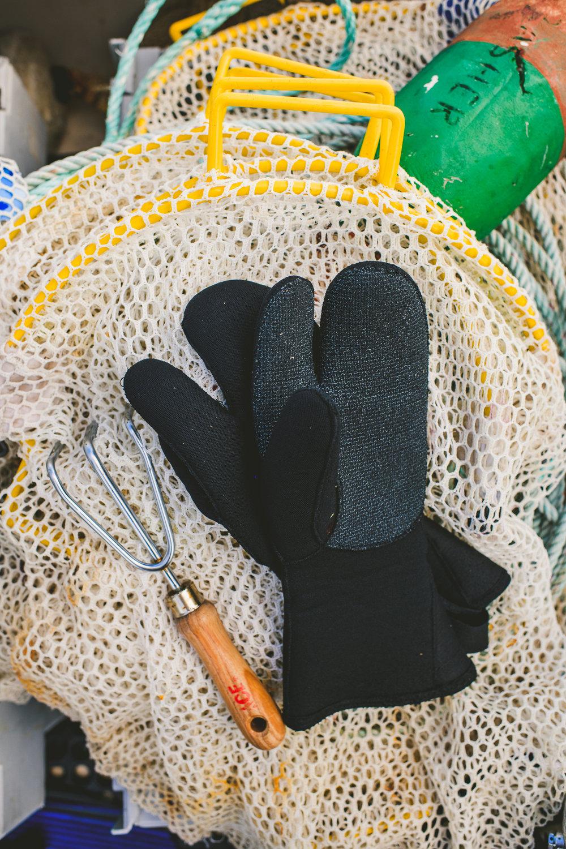 sea urchin Edible Boston-33_WEB.jpg