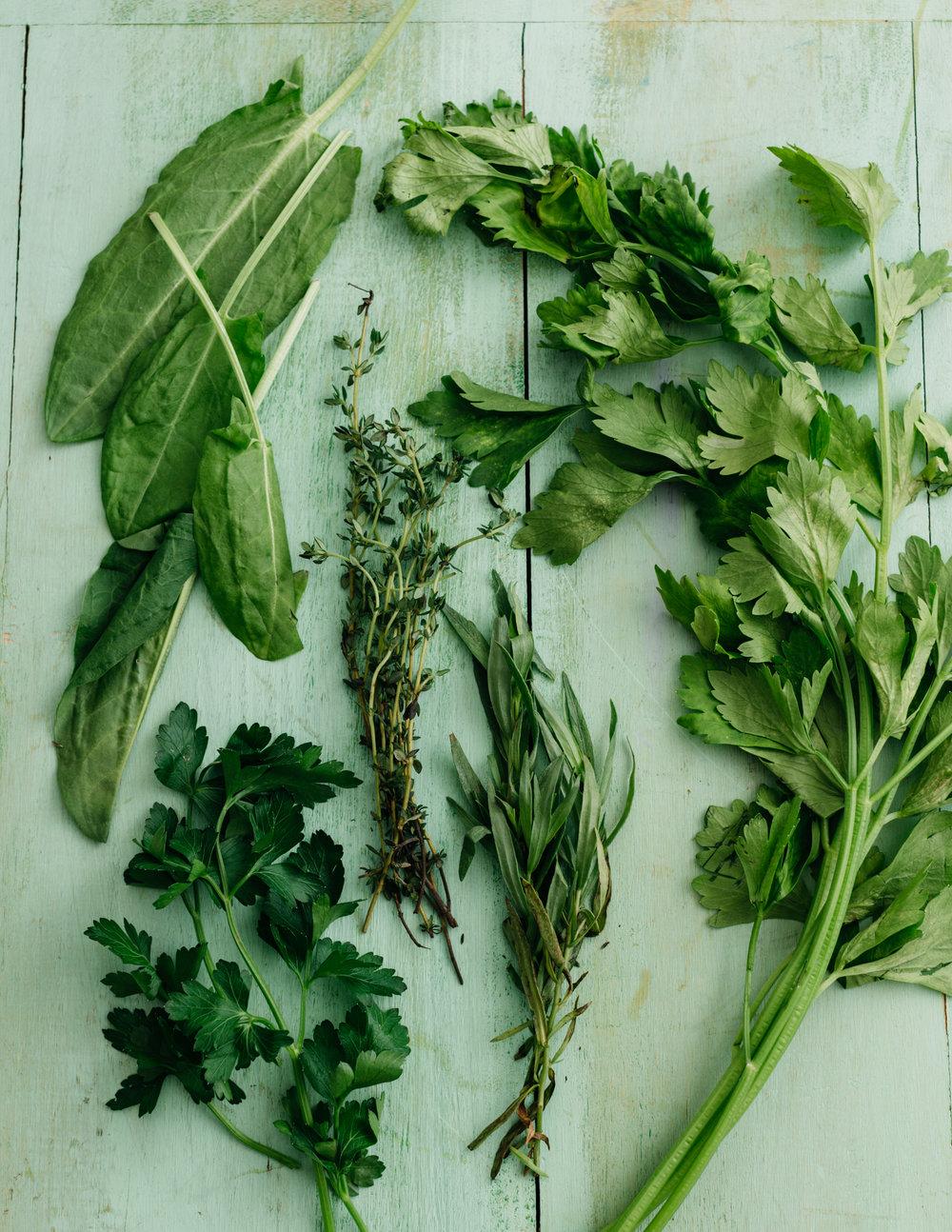 OI_Herbs-2975_WEB.jpg