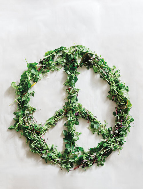 peace sign microgreens.jpg