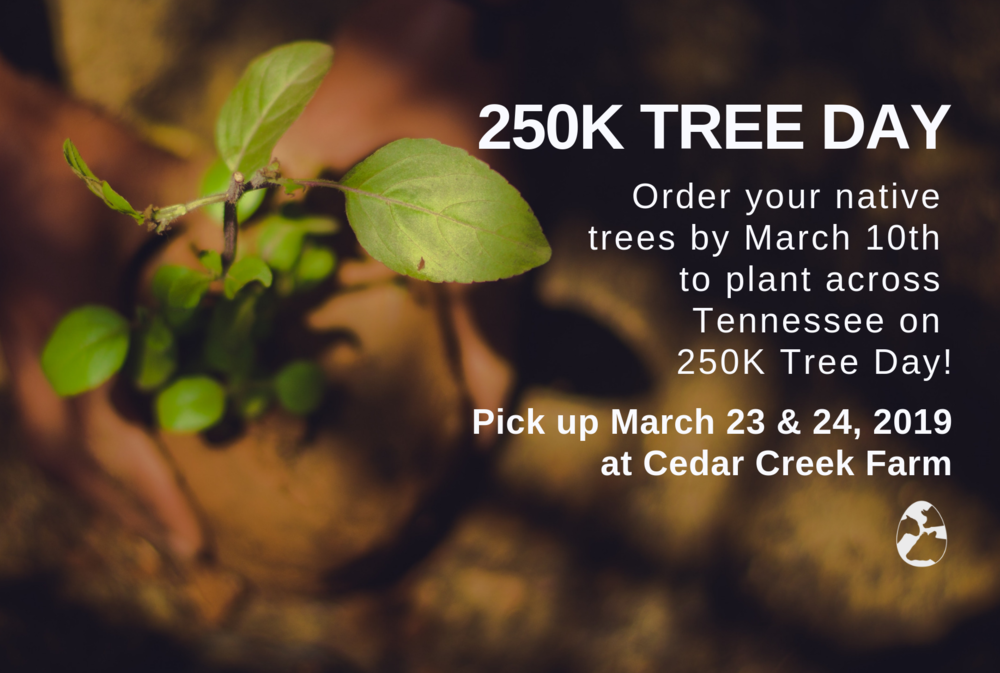 250k Tree Day 2019 (2).png