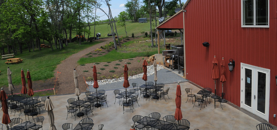 cana vineyards middleburg 5